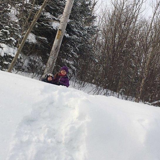 Fou de l'hiver 2019