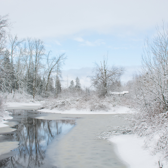 WinterPlay 2019