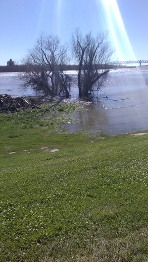 Mississippi River flooding in Jefferson parish on levee off River road