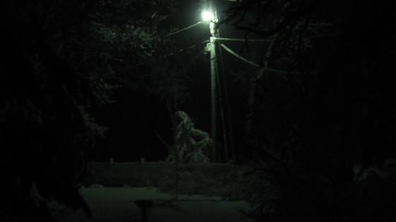 """""""Sprang Forward, Into The Snow"""""""