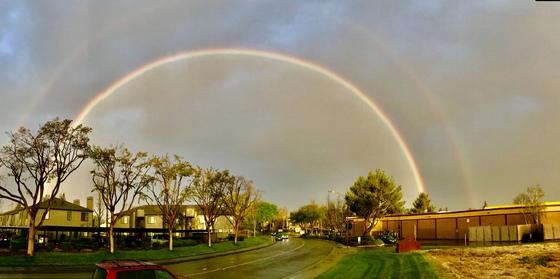 Stockton Rainbow