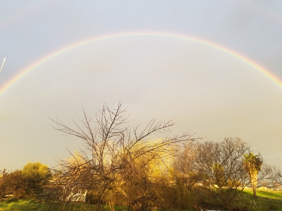 Double double rainbow