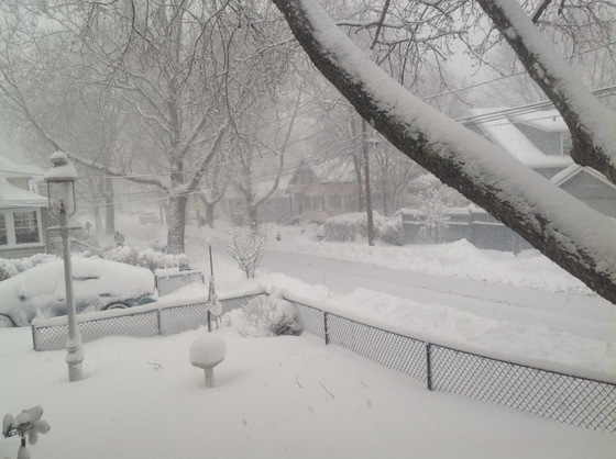Blizzard Skylar photos, West Roxbury