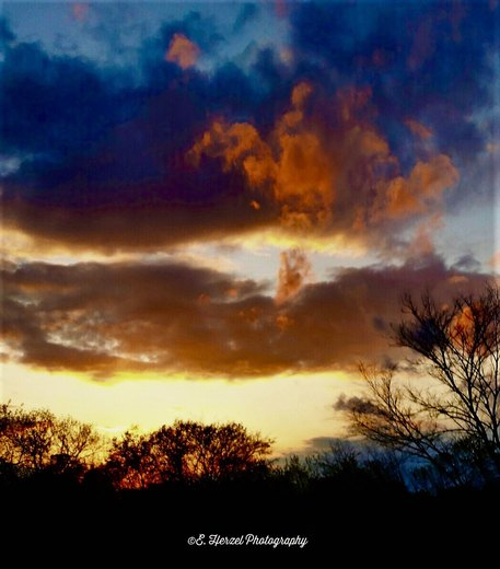 Sunset Madness