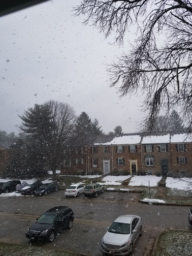 Snowing in Mays Chapel!