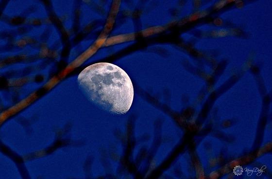 Tonight's Waxing Gibbous Moon