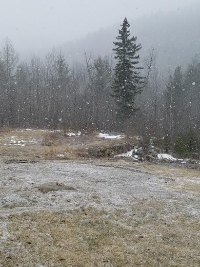 Snowing in Jay (NY) on Jay Mtn Rd