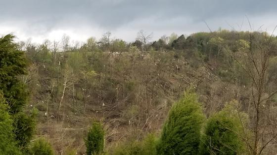 Tornado Damage South of Chester