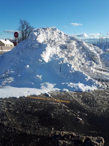the winter Summerville, SC