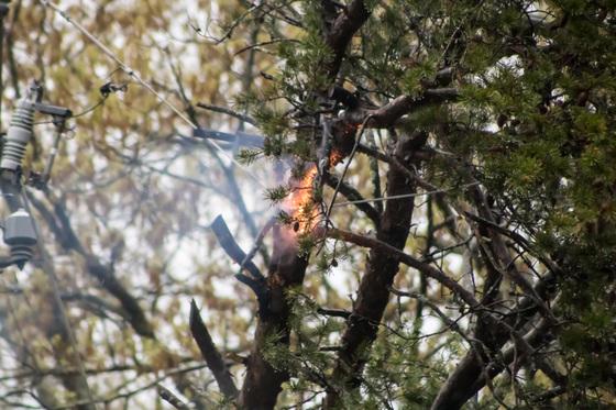 Power Line Fire