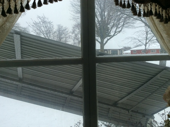 Storm damage - our awning is hanging across our front window.