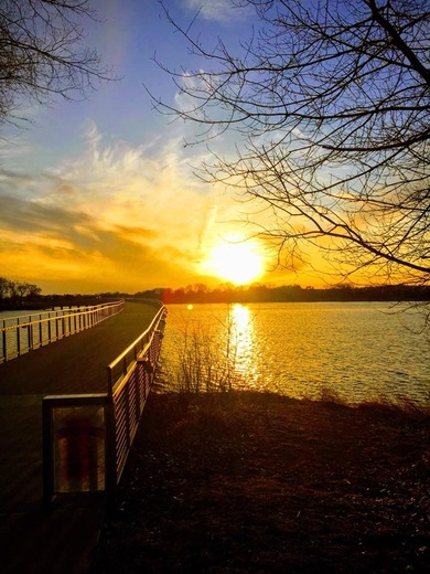 Sunset Grays Lake