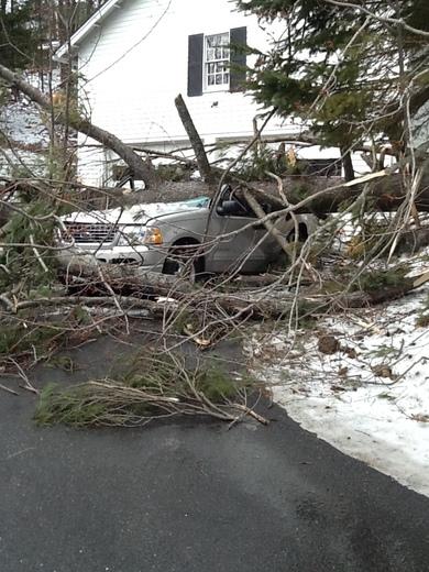 Damage from wind in Littleton.