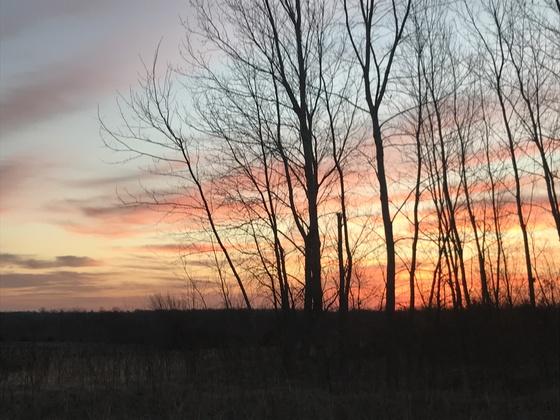 Oak Grove Sunrise