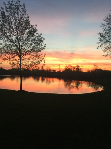 Picture that was taken at sunrise point townhome in pleasant Hill , Ia around three days ago.
