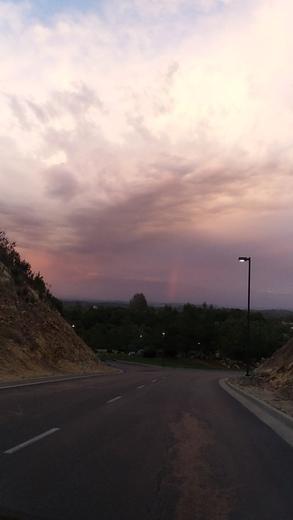 Red Hawk Rainbow