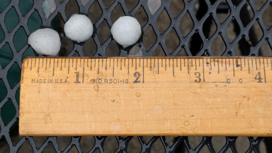 "outh Sacramento about 7:30am this morning. This is proof of appx 1/2"" hail"