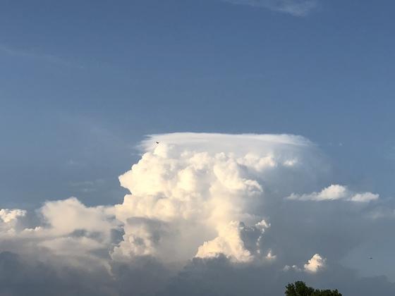 Cumulus congestus clouds...