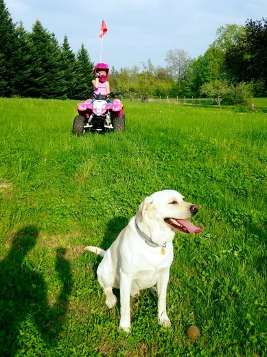 New 4wheeler for 6yr old Aleia.an Tannah