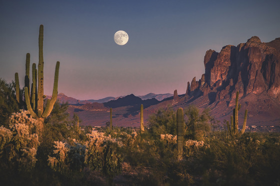 Scenic, Seasons & Landscape Winner - Moonrise at the Superstitions