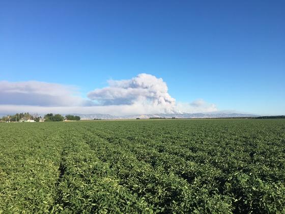 Yolo Fire As Seen From Dixon 736 AM