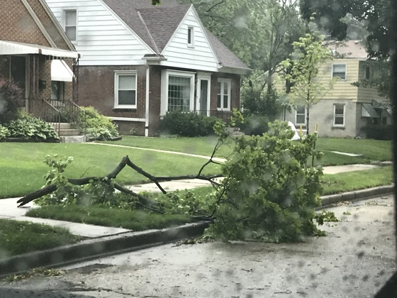 Here are some photos of storm damage in the Cooper Park neighborhood. (83rd and Center)