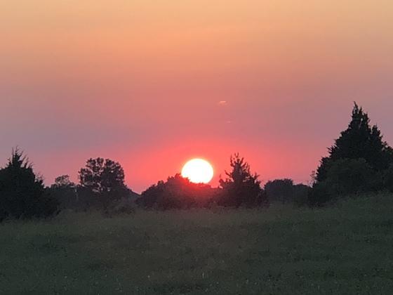 Tonight's beautiful sunset.