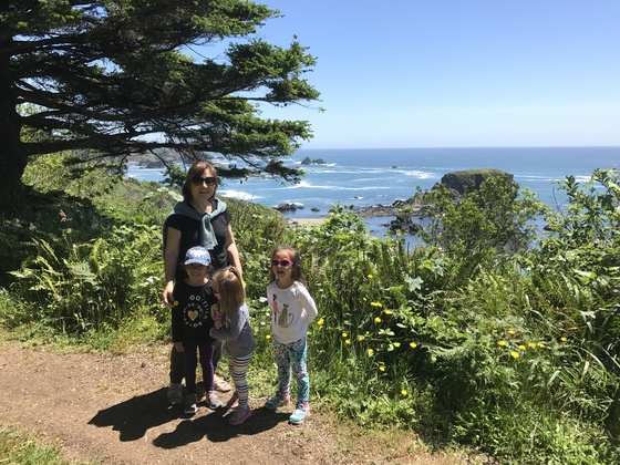 Harris Beach State Park Hike
