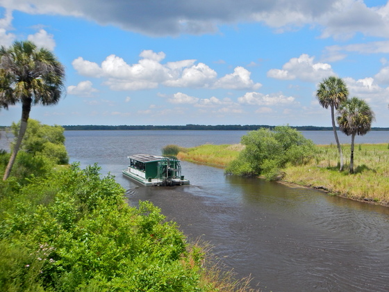 Air-boat Cruise on Lake Myakka