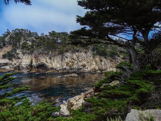 Scenic Cove