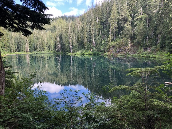 Mount Baker-Snoqualmie National Forest
