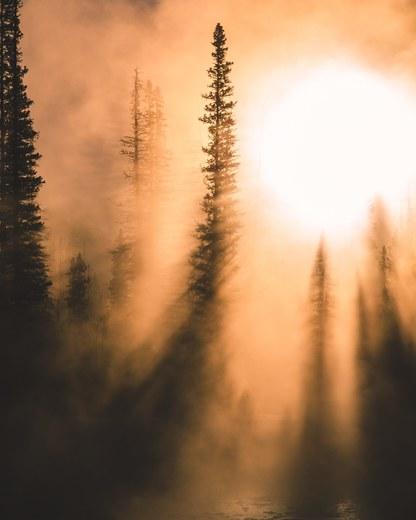 6b. Morning fog on the Bow