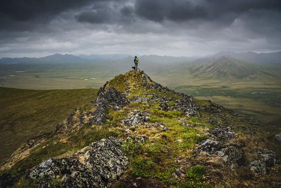 Summiting Surfbird Mountain
