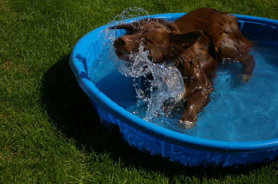 Cooling down!