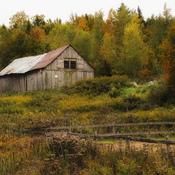 concour d'automne