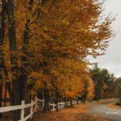 concours couleurs d automne