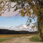 les belle couleur d automne