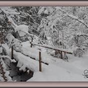 Beauté de la neige !!!