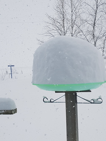 first snowfall in bergland ontario , this is my birdfeeder Bergland, ON