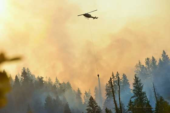 Helicopter Forest Fire Fight