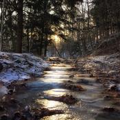 Sentier de lumière glacée ....