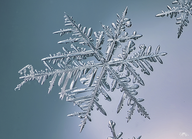 Image result for BEAUTIFUL ICE FLAKES