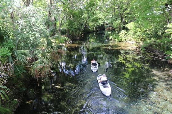 Silver Springs State Park - Kayaking