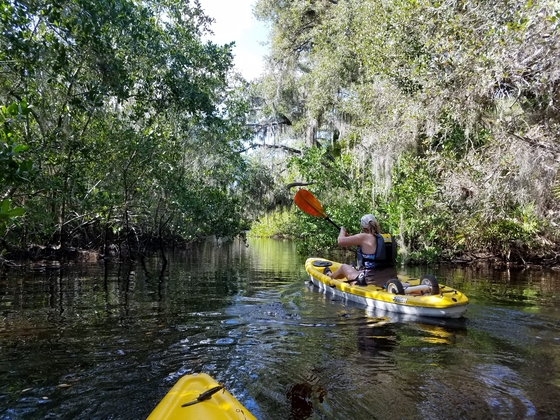 Kayaking at Oscar Scherer State Park
