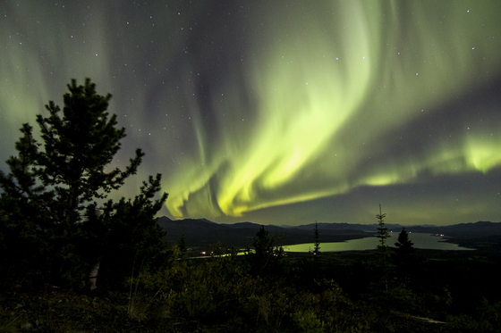 Marsh Lake, Yukon, Canada