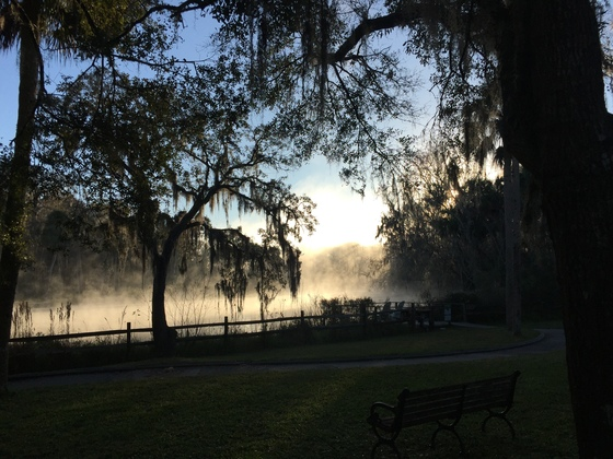 Awakening from the Fog of Sleep