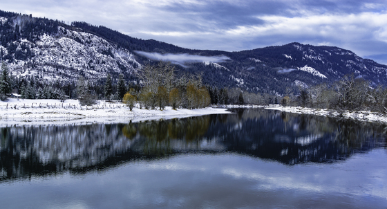 Shuswap River Winter Color