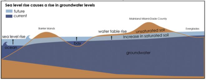 News - Florida sea level rise big problem for septic tank