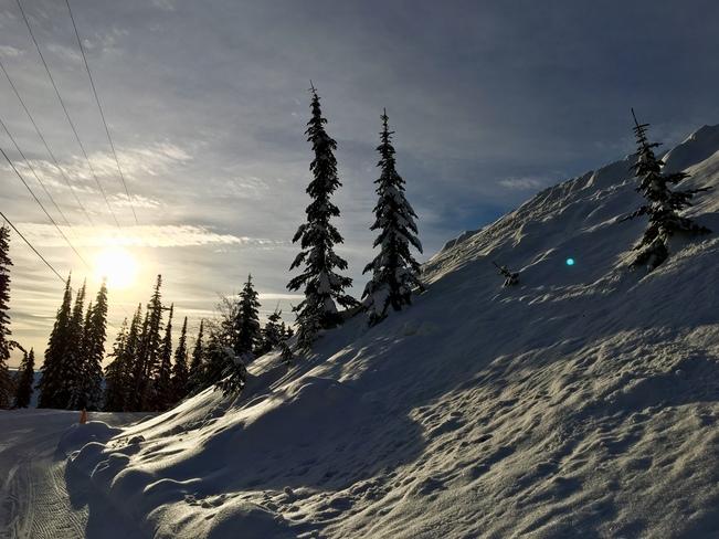 Silver Star Snowshoe Trail Vernon Bc