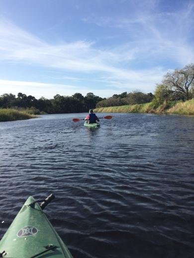 A kayak down the Myakka River